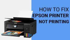 Epson printer not printing